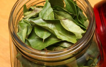 Storing curry leaves Featured