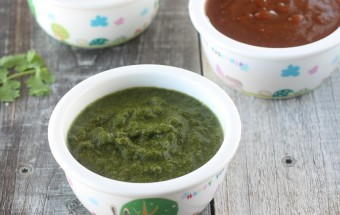 Green and Tamarind Chutney for Chaat | Cooks Joy