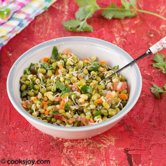 Moong Sprouts Chaat   Cooks Joy
